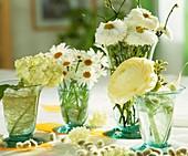 Viburnum, marguerites, daisies, ranunculus
