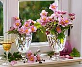 Anemonen in Gläsern am Fenster