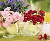 Gänseblümchen als Tischdeko
