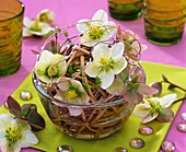 Christmas and Lenten roses in ball of willow twigs