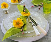 Napkin with primulas and apple twigs on glass plates
