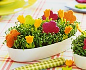 Cress in white jardinière with colourful felt flowers