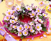 Wreath of Japanese anemones, catmint & Michaelmas daisies