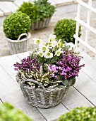 Flowering and foliage plants in baskets