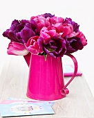 Tulips 'Negrita' and 'Innuendo' in pink watering can