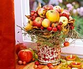 Arrangement of apples and ornamental apples
