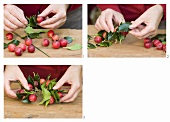 Making a Christmas wreath of holly leaves & ornamental apples