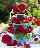 Raspberries & red roses on tiered stand of upturned cups & plates
