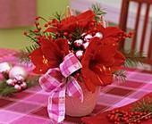 Christmas arrangement of amaryllis, ilex berries & Douglas fir