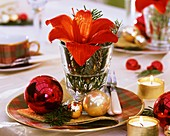 Amaryllis with fir sprigs and baubles (plate decoration)