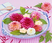 Various types of dahlias & floating candles in bowl of water