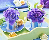 Blue hydrangeas in striped espresso cups and chocolates