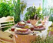 Flowering garden herbs decorating a laid table