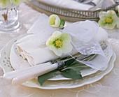 Christmas rose on white napkin on embossed plate