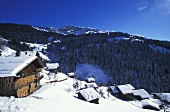 A snowy mountain village (Village de Boudin in France)