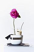 Mozzarella cream and a pink rose