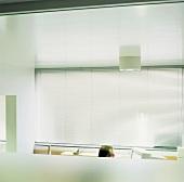 Männerkopf vor Computerbildschirm - im Hintergrund geschlossene Jalousie vor breiter Fensterfront
