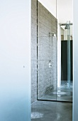 Walk-in designer shower with mirrored back wall