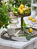 Lemons in pedestal dish on tray