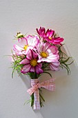 Posy of cosmos with checked ribbon
