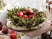 Wreath of mistletoe and Douglas fir on ceramic dish