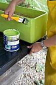 Painting a window box green