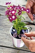 Putting glass prisms into a flowerpot
