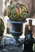 Autumn arrangement of fir cones and moss