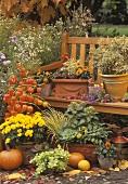 Garden terrace in autumn