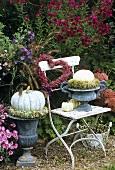 Autumn arrangement centred around garden chair