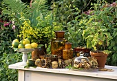Dried herbs and citrus fruit on garden table