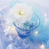 Festive decoration: tiny parcel, beads and flower in glass