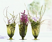 Three vases with hyacinths & posies of horned violets