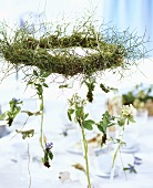 Vergissmeinnicht und Blütenzweigen hängen am Kranz