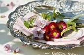 Bellis und Pfirsichblüten auf einer Stoffserviette
