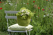 Bag filled with marguerites and lady's mantle