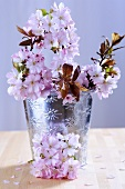Cherry blossom in a metal vase