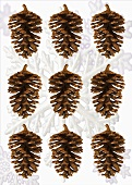 Fir cones and snowflakes