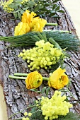 Ranunculus, mimosa and pine on piece of bark