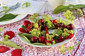 Wreath of cherries and lady's mantle on a plate