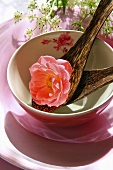 Rose and coconut shell spoons in a bowl