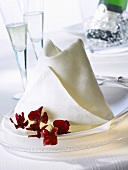 Napkin folding design: 'Texas'