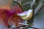 Glass bird on the branch of an ornamental apple tree