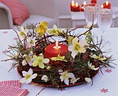 Wreath of dogwood, Christmas roses, ivy & pine with candle