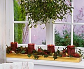 Advent arrangement: ivy, holly, spruce, mistletoe, apples, candles