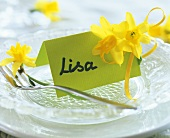 Narcissi and place card (Lisa) on glass plate