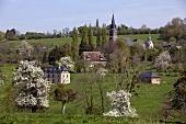 Normandy landscape (France)