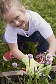 A little girl cutting chives in a flower bed