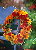 Wreath of nasturtiums, lady's mantle and catmint