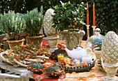 A laid table with an autumnal feel in the open air
